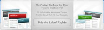 Thumbnail PLR Bonus Package (plr)