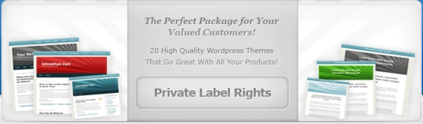Product picture PLR Bonus Package (plr)